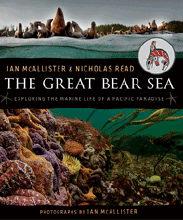 greatbearsea_214